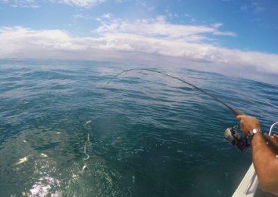 fishing4-400x284